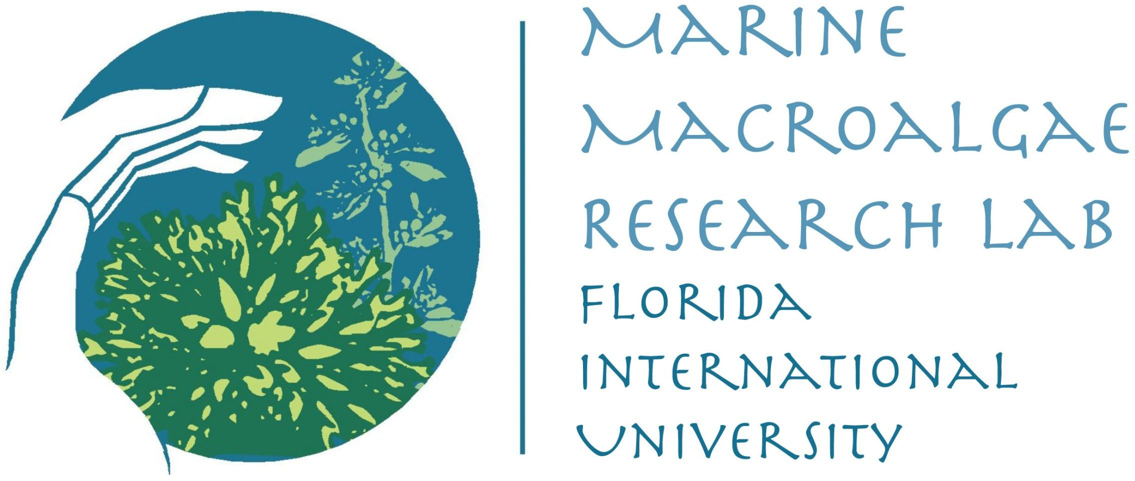Welcome to the Marine Macroalgae Research Lab @ FIU!