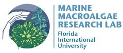 Marine Macroalgae